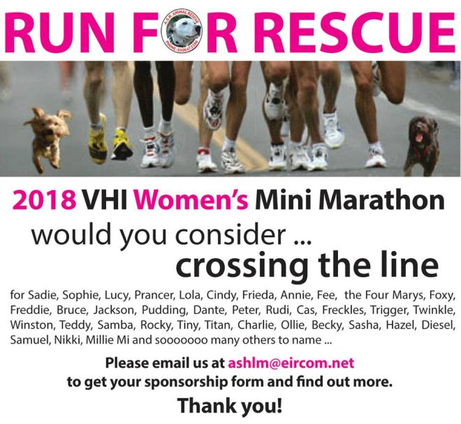 VHI Run For Rescue Marathone