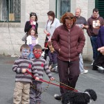 dogshow063